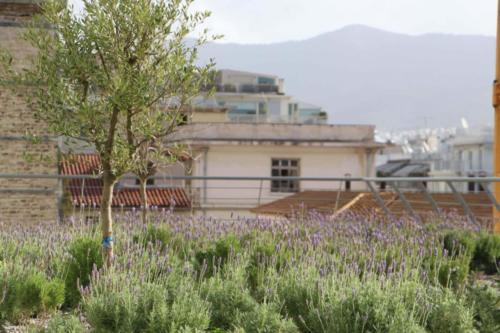 Evangelisations-Krankenhaus - Athen, Griechenland